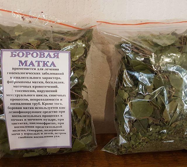 Какие травы вызывают месячные: список лекарственных трав