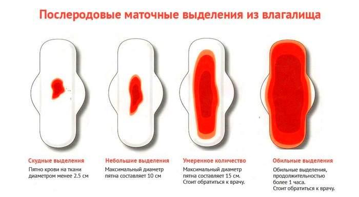 Послеродовые менструации