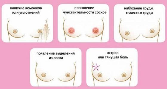 Молочные железы перед месячными