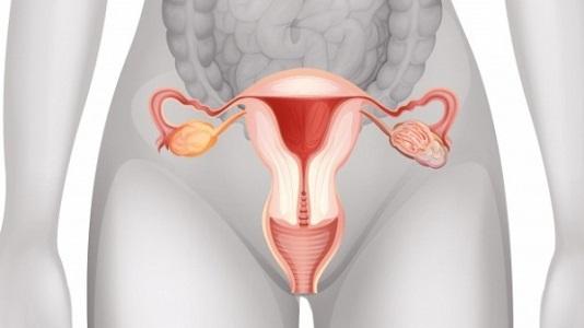 Противозачаточные средства при миоме матке
