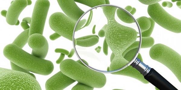 Зуд перед месячными при нарушении микрофлоры