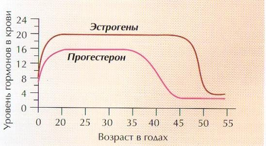Снижение уровня гормонов при климаксе