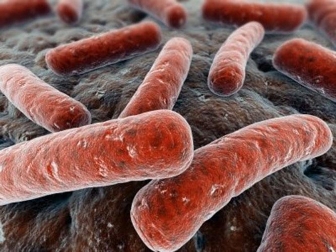 Симптомы бактериального вагиноза, чем лечить, особенности болезни при беременности