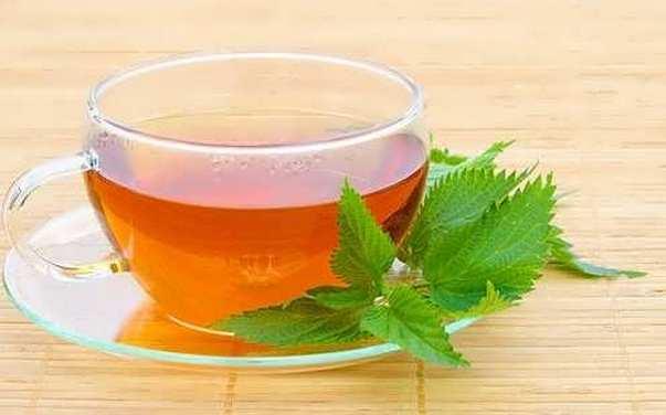 Чай из крапивы при месячных