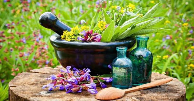 Травяной лекарственный сбор при обильности месячных
